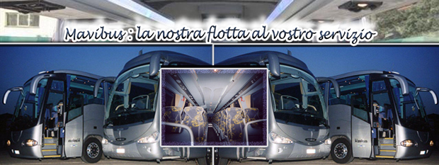 Autolinee Modena, Bologna, Firenze, Roma, Salerno e Potenza Noleggio Pullman
